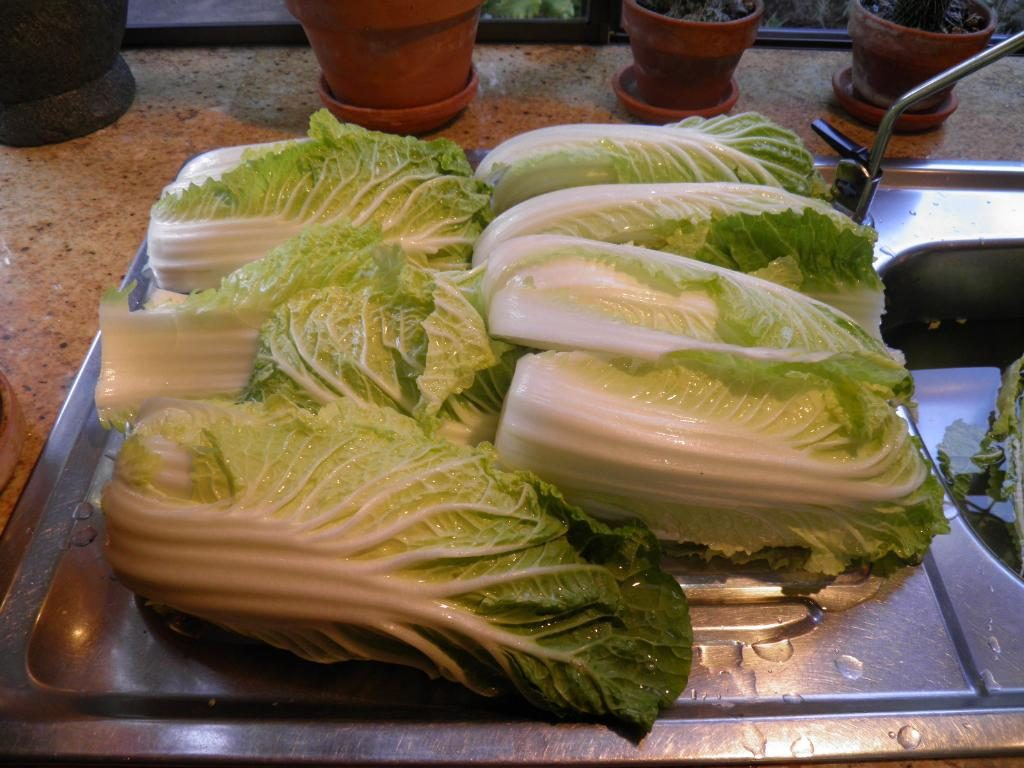 Cabbage. Cut / tear into quarters